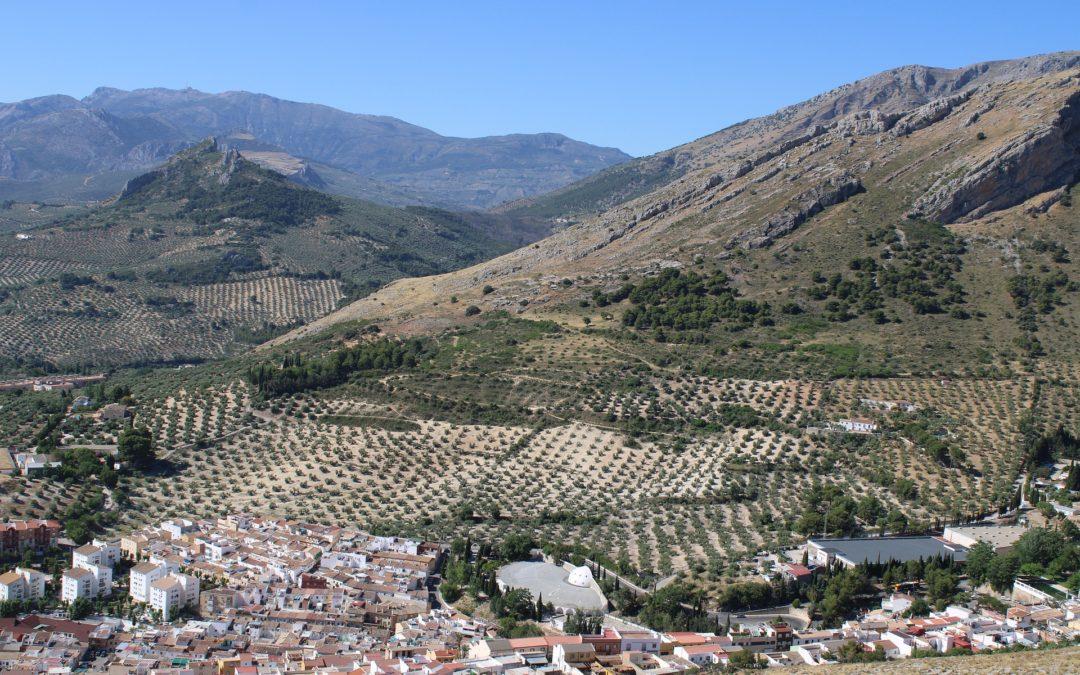La agricultura andaluza incrementa un 12,7% sus datos de siniestralidad laboral